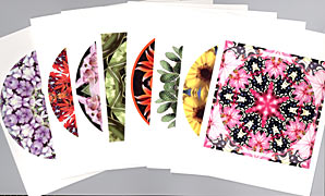 nature mandala greeting card set